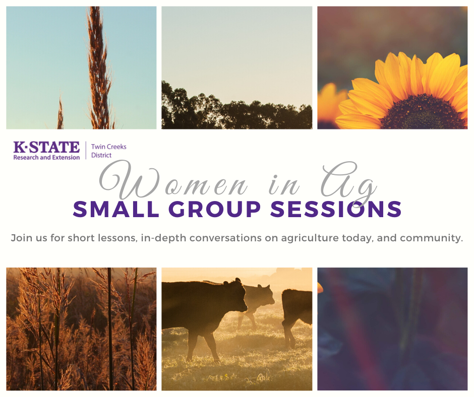 Women in Ag Small Group Sessions Flyer